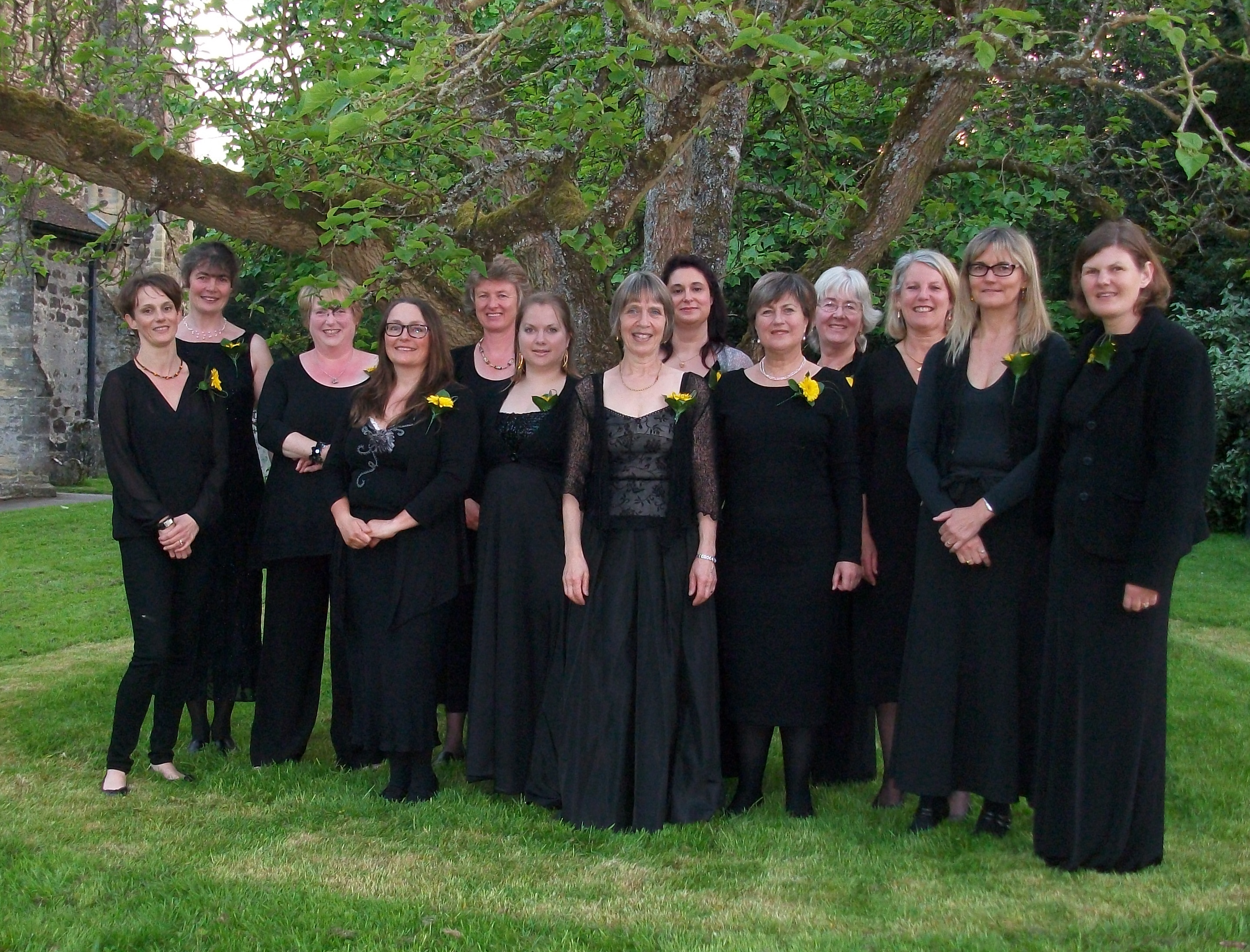 Cantilena choir in 2012